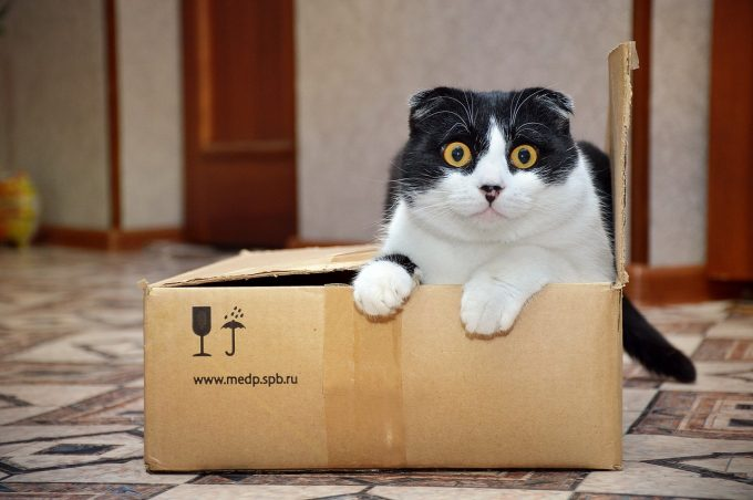 Where to Get Free Moving Boxes in Phoenix, Arizona